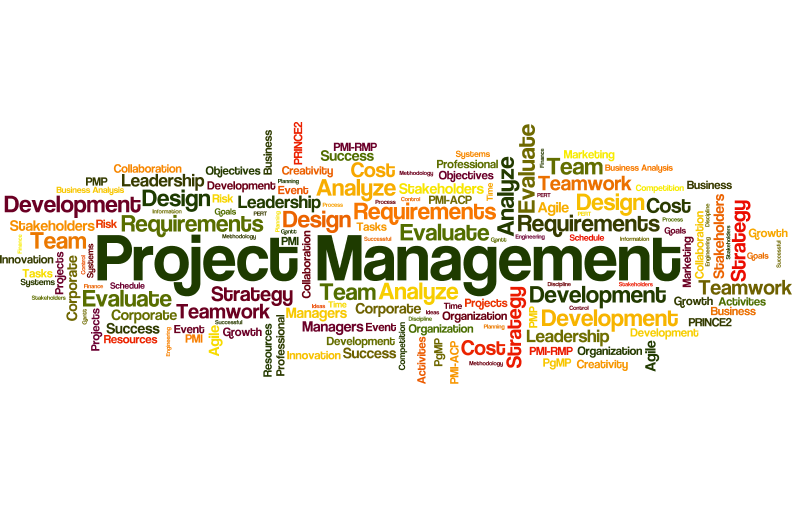 8 Tips for New Project Managers from 7 of the World's Leading PM Experts